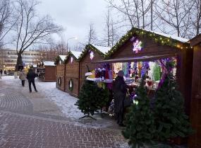 Ёлочные базары откроются в Реутове 15 декабря